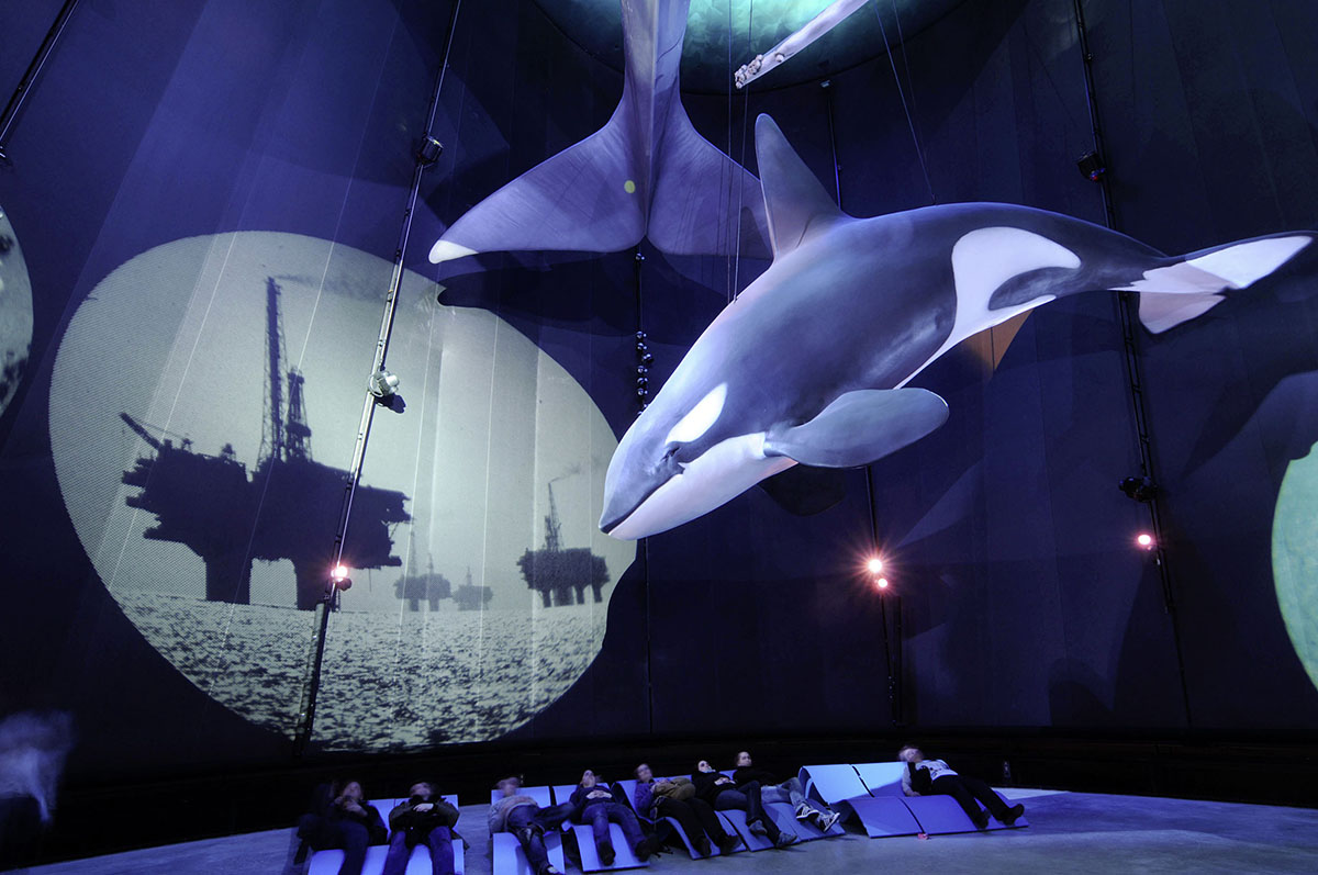 """Giants of the sea"", exhibition at Ozeaneum Stralsund"